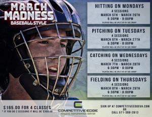 Baseball Madness2