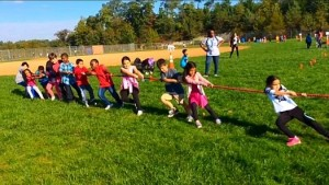 School Field Day